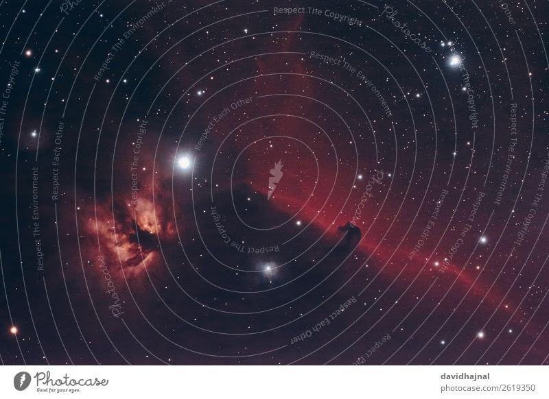 Pferdekopf- und Flammennebel Teleskop Technik & Technologie Wissenschaften Fortschritt Zukunft Raumfahrt Astronomie Umwelt Natur Himmel nur Himmel