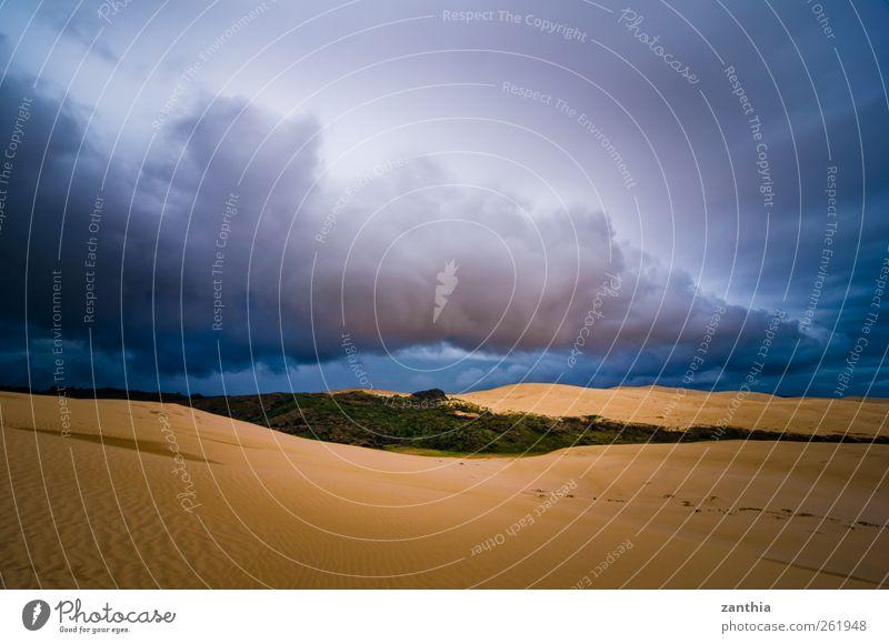 Oasis Natur Sommer Wolken Umwelt Landschaft Sand Stimmung Horizont Wetter Klima Wandel & Veränderung bedrohlich Wüste Idylle Düne schlechtes Wetter