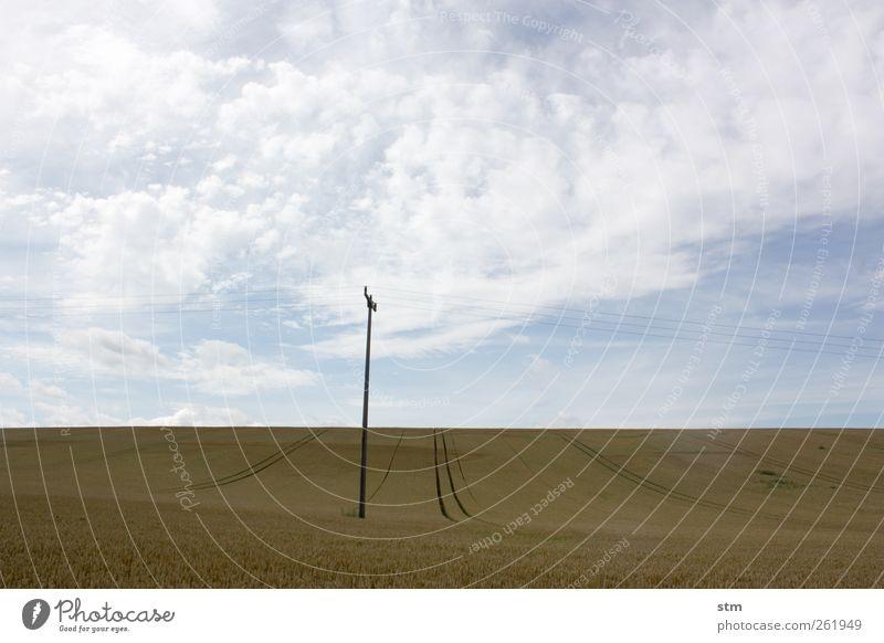 roadmovie 29 Ausflug Ferne Freiheit Telekommunikation Energiewirtschaft Umwelt Natur Landschaft Pflanze Erde Himmel Wolken Wetter Schönes Wetter Nutzpflanze