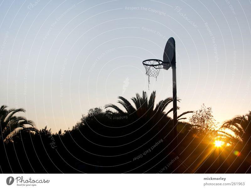 Early Morning Hour Leben Wohlgefühl Zufriedenheit Sinnesorgane Freizeit & Hobby Sommer Sommerurlaub Sport Ballsport Basketball Basketballkorb Umwelt Natur Sonne