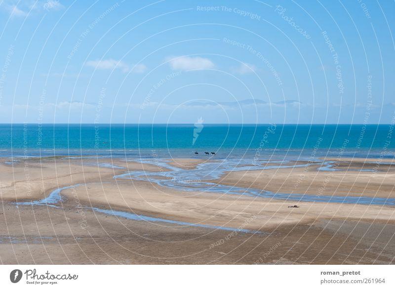Weitsicht Natur Ferien & Urlaub & Reisen Sommer Meer Strand ruhig Ferne Erholung Umwelt Leben träumen Horizont Klima Wellness Frieden horizontal