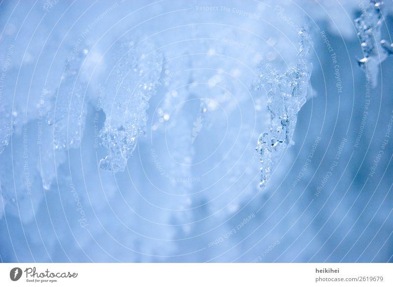 Eiszeit Winter Natur Wasser Wassertropfen Frost Garten fest Flüssigkeit glänzend kalt nass natürlich blau Vergänglichkeit Zeit Eiszapfen gefroren Eiskristall