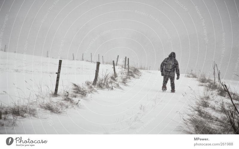 whiteway Mensch Mann weiß Einsamkeit Winter Erwachsene Schnee grau gehen Kraft maskulin wandern Abenteuer Hoffnung Unendlichkeit Fußweg