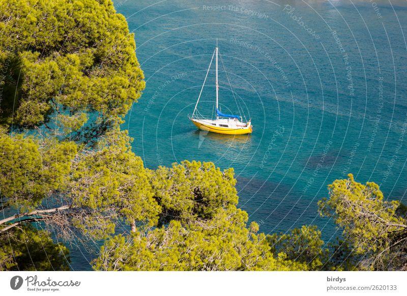 chill - idyll Lifestyle Freizeit & Hobby Ferien & Urlaub & Reisen Sommerurlaub Natur Wasser Schönes Wetter Baum Küste Bucht Meer Mittelmeer Schifffahrt