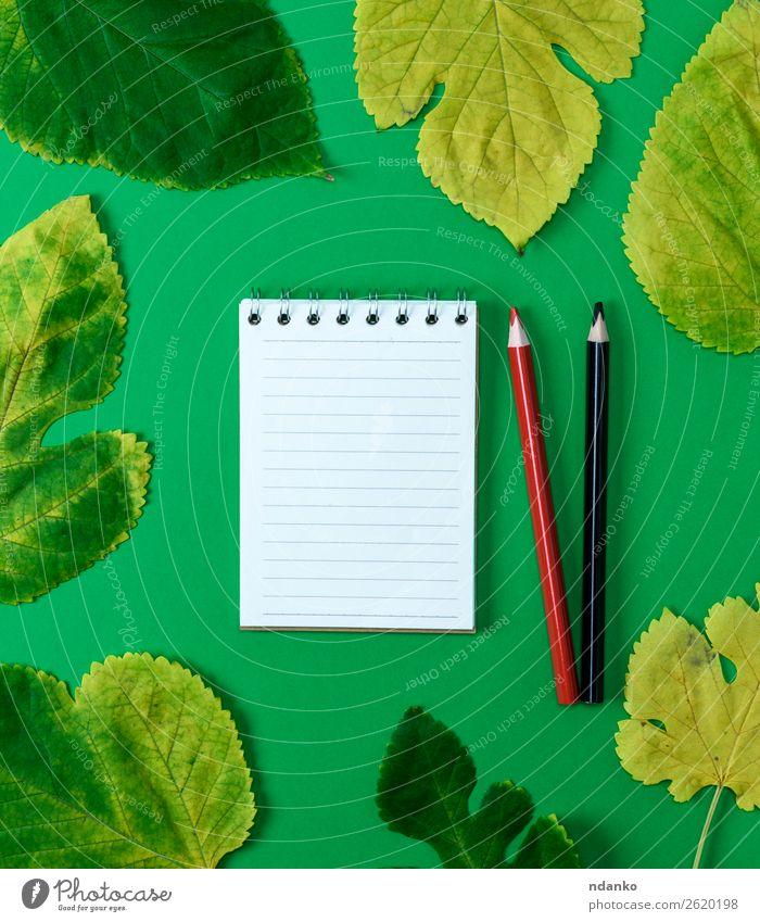 offenes Notizbuch in Übereinstimmung mit weißen leeren Seiten Bildung Schule Natur Pflanze Herbst Baum Blatt Papier zeichnen hell natürlich Sauberkeit gelb grün