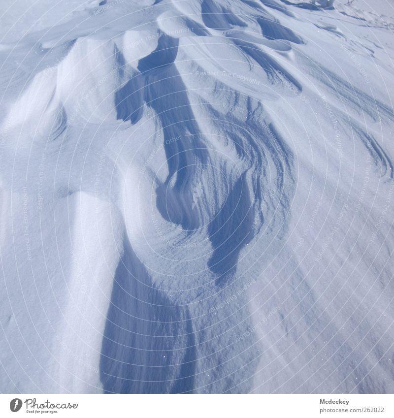 Kalte blaue Dünen Natur Wasser weiß Sonne Winter Umwelt Landschaft kalt Schnee grau Eis Wind nass natürlich authentisch