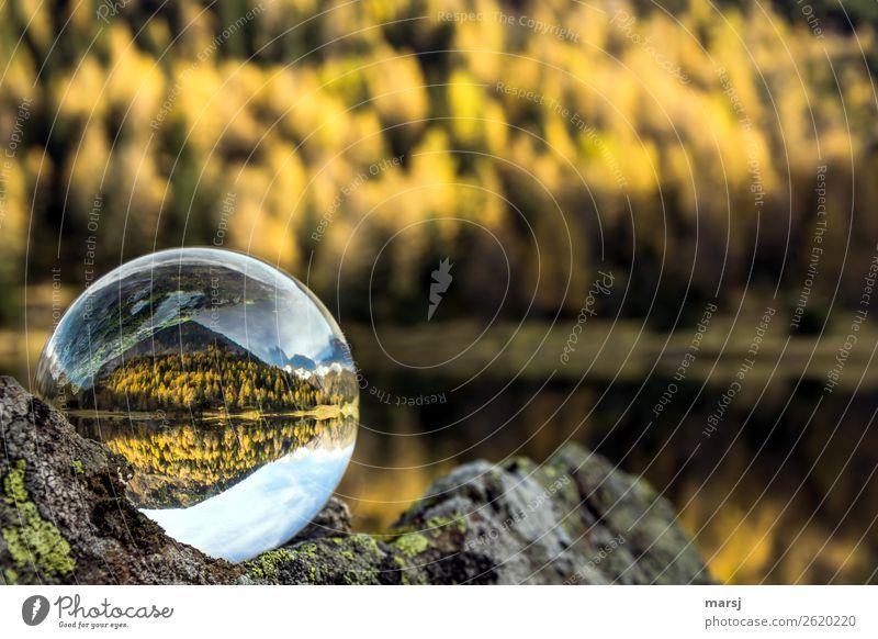 Herbst und See in der Kugel harmonisch Berge u. Gebirge Lärche Wald Alpen Duisitzkarsee Gebirgssee leuchten elegant herbstlich Glaskugel Herbstfärbung Farbfoto