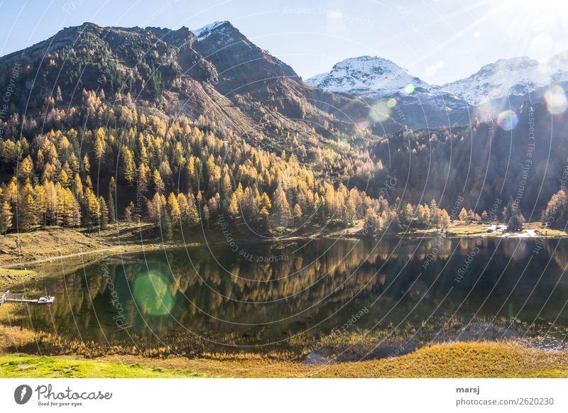 Ab heute ist der Herbst 2018 Geschichte harmonisch Berge u. Gebirge wandern Natur Landschaft Lärchenwald Alpen Schneebedeckte Gipfel See Duisitzkarsee
