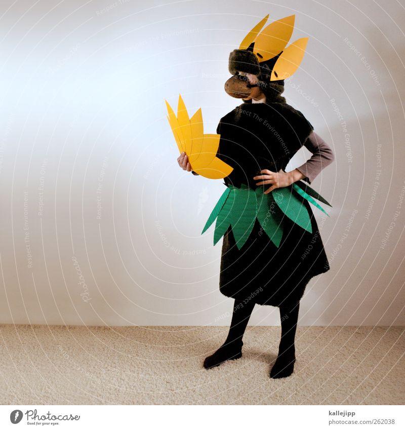dschungelkönigin Mensch Tier Blatt Spielen Körper Wildtier Karneval Urwald Affen Karnevalskostüm Kostüm Bär Krone Kokosnuss Fächer Frucht