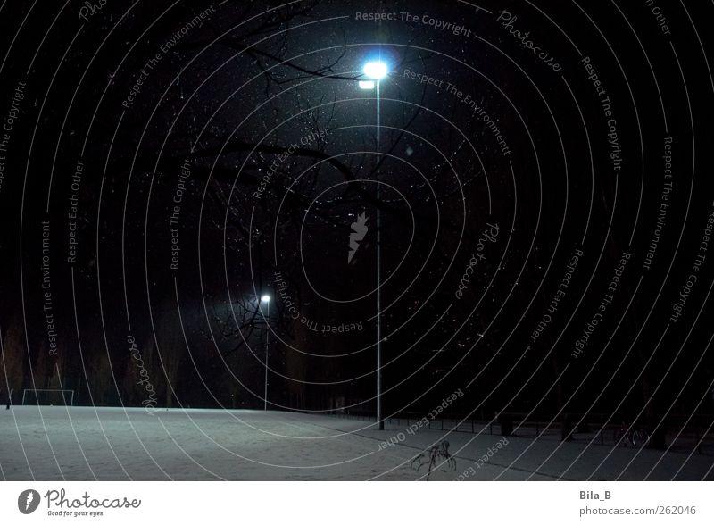 Licht ins Dunkel Fußballplatz Sportstätten Flutlicht Nebel Eis Frost Schnee Baum Menschenleer Stimmung Einsamkeit Energie Winter Winternacht Schneelandschaft