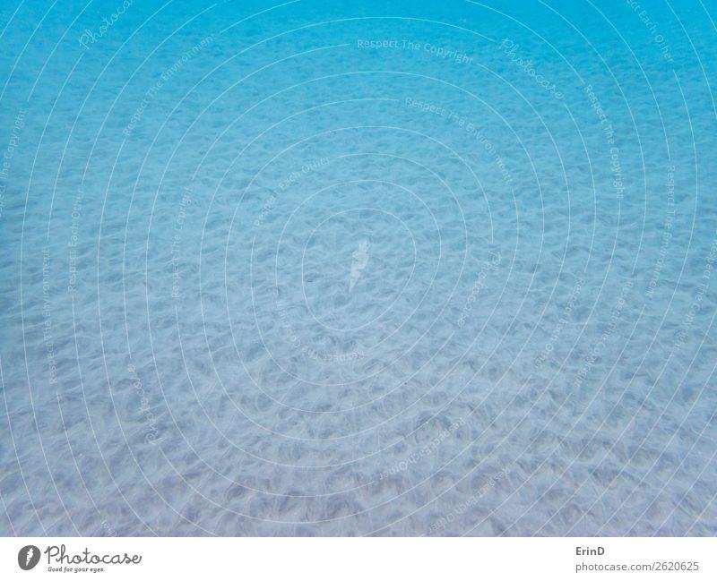 Textur und Muster im Sand auf dem Meeresboden unter Wasser Design schön ruhig Ferien & Urlaub & Reisen Tourismus Gesäß Umwelt Natur Landschaft Coolness frisch