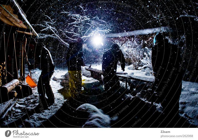 gartenparty? Mensch Mann Natur Jugendliche Winter Erwachsene Umwelt dunkel Landschaft kalt Schnee Garten Schneefall Freundschaft Arbeit & Erwerbstätigkeit