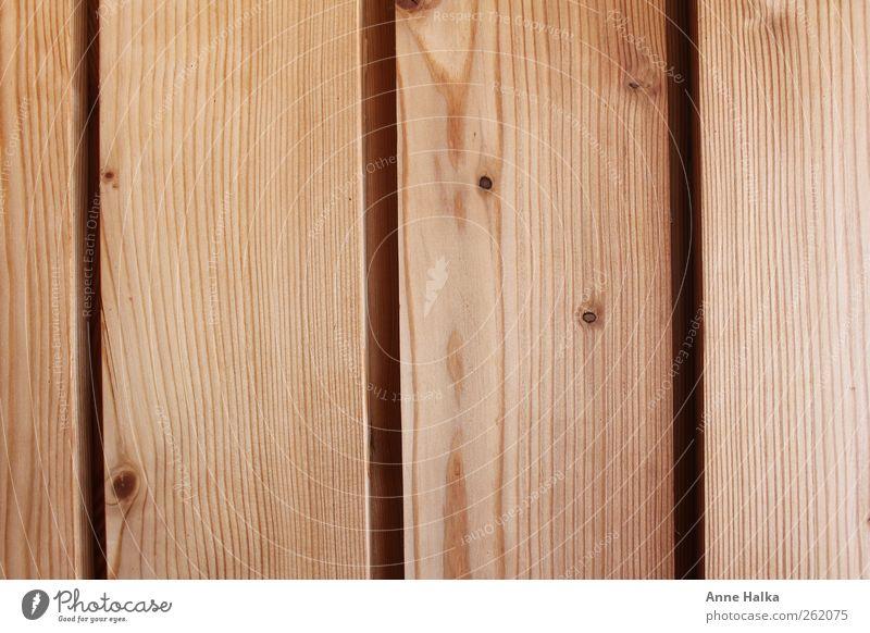 Holztextur Design Hausbau Renovieren einrichten Innenarchitektur Tisch Handwerker Industrie Erneuerbare Energie Architektur Natur Pflanze Sommer Baum Symmetrie