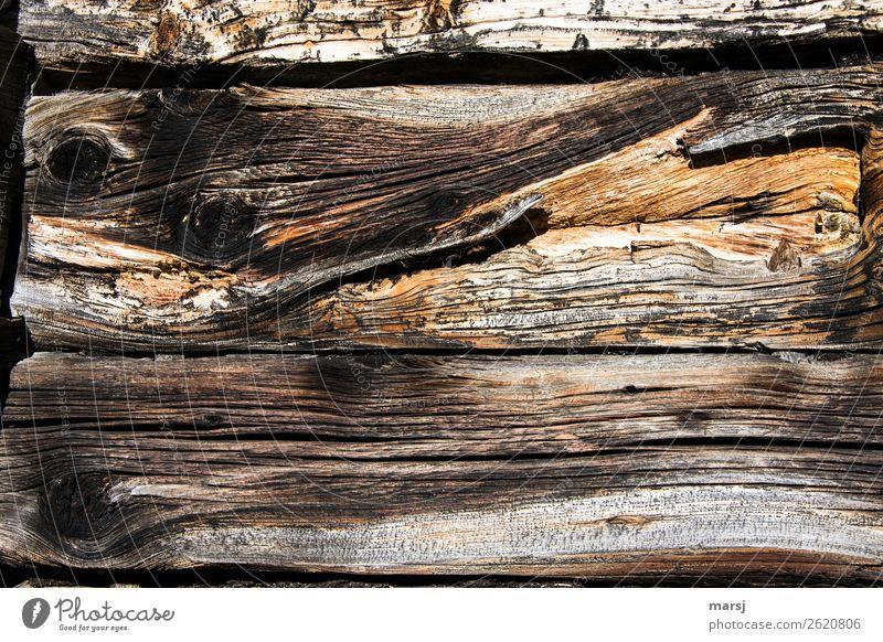 Holz mit Geschichte Holzwand Holzbrett Maserung Astloch Patina alt bizarr Verfall verwittert Vergänglichkeit Haltbarkeit nachhaltig eigenwillig einzigartig
