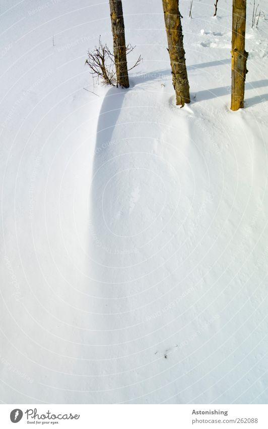 die 3 Umwelt Natur Landschaft Pflanze Winter Wetter Schönes Wetter schlechtes Wetter Wind Eis Frost Schnee kalt blau braun schwarz weiß lang dünn Holz Stab
