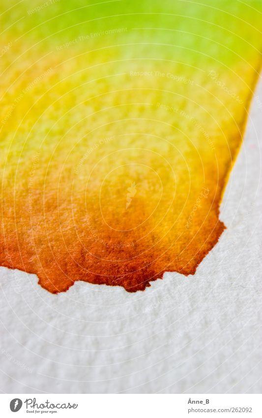 verlaufen weiß grün schön rot gelb Herbst Farbstoff Freizeit & Hobby Wassertropfen leuchten Papier malen chaotisch Verlauf üben Schmiererei