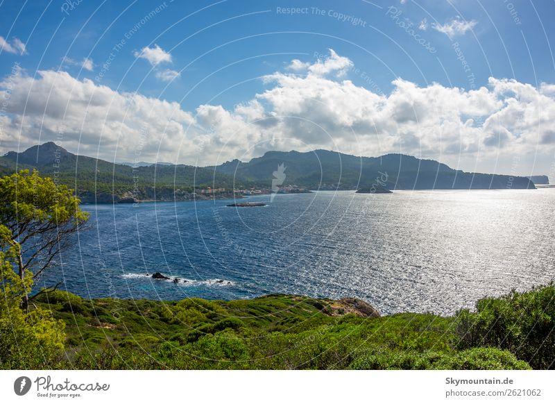 Nordwest Küste Mallorcas Ferien & Urlaub & Reisen Natur Sommer Pflanze Landschaft Sonne Meer Tier Ferne Strand Umwelt Tourismus Freiheit Ausflug Wellen