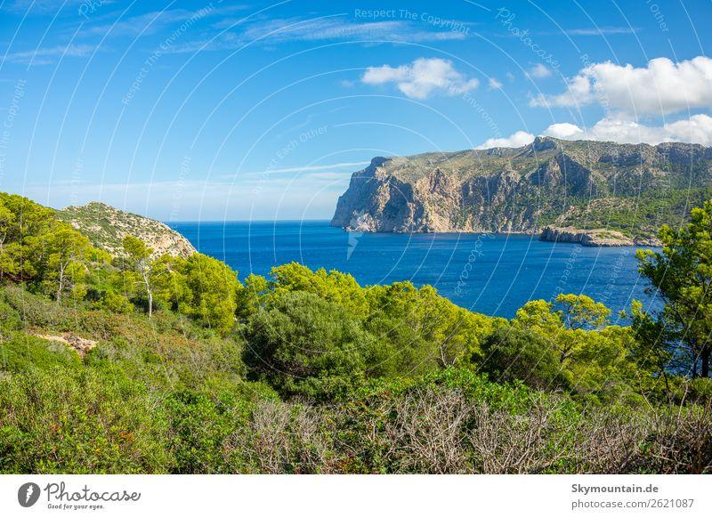 Blick von Insel zu Insel, Sa Dragonera nach Mallorca Ferien & Urlaub & Reisen Natur Pflanze Landschaft Tier Umwelt Gefühle Küste Felsen Stimmung Abenteuer