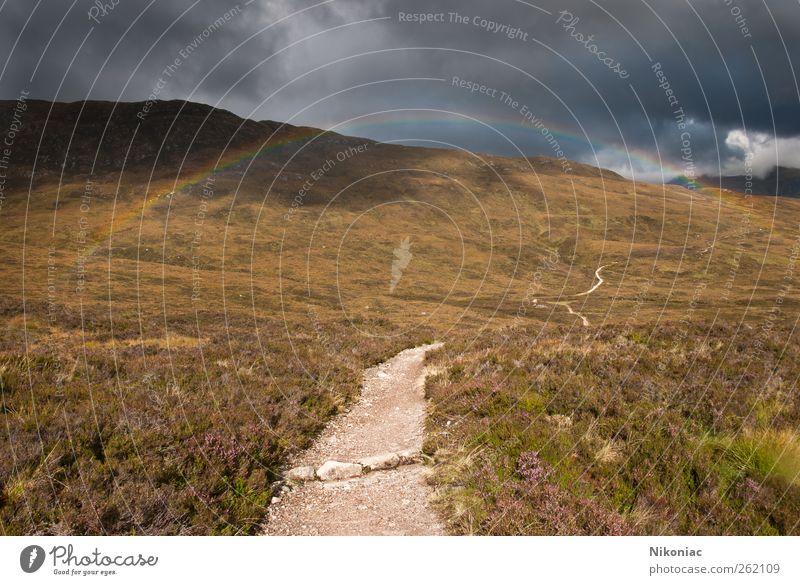 Am Ende des Regenbogens Natur Wolken Herbst Landschaft Wege & Pfade Wetter Hügel Ausdauer Tatkraft