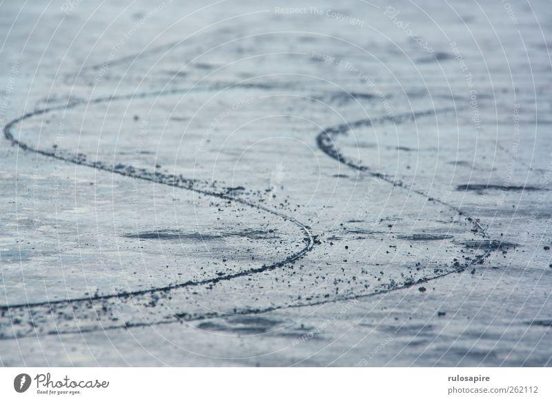 Spuren im Eis #2 blau Winter kalt Sport grau Küste Zufriedenheit elegant Klima Erfolg Frost Konzentration Ostsee Willensstärke