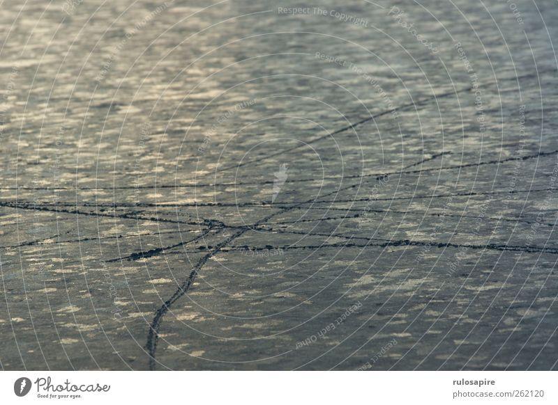 Spuren im Eis #6 Winter Wintersport Frost Küste Ostsee elegant blau grau Erfolg Willensstärke Genauigkeit Zufriedenheit kalt Klima Konzentration Präzision