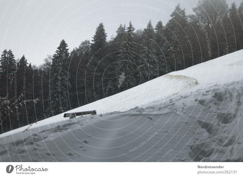 Baumloben | Schiefe Bank Winter Einsamkeit Wald Landschaft dunkel Schnee Berge u. Gebirge Wege & Pfade Eis laufen Klima wandern Frost Fußspur frieren