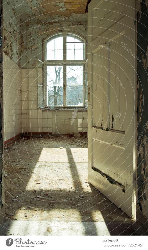 Raum um Raum durchschreiten Ruine Bauwerk Gebäude Fenster Tür Denkmal alt außergewöhnlich trist Endzeitstimmung Nostalgie Tod Vergangenheit Vergänglichkeit