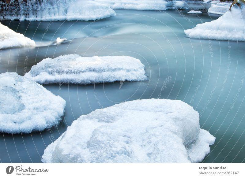 Winterbach II Umwelt Natur Landschaft Urelemente Klima Eis Frost Schnee Gletscher Wellen Flussufer Insel Teich See kalt nass blau weiß gefroren Arktis Antarktis