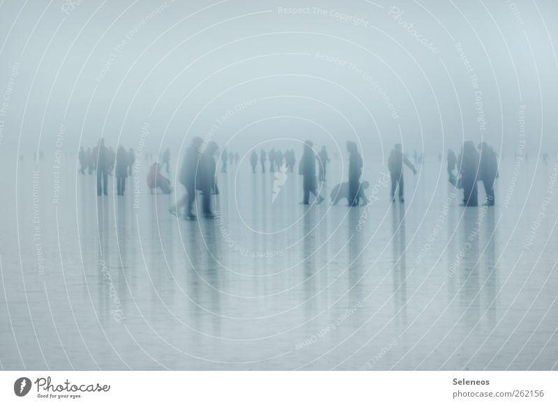 just walking Winter Schnee Winterurlaub Mensch Menschengruppe Menschenmenge Nebel Eis Frost gehen kalt spazieren Spaziergang Streifen Silhouette Kontrast
