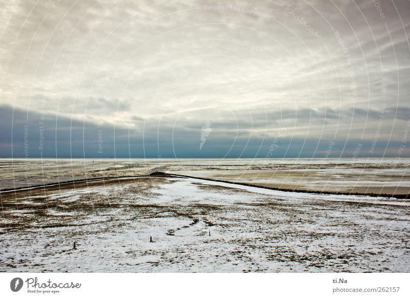 weite Nordseewelt Himmel Natur Wasser Winter Wolken Umwelt Landschaft kalt Gras Küste Luft Eis Tourismus Frost Unendlichkeit