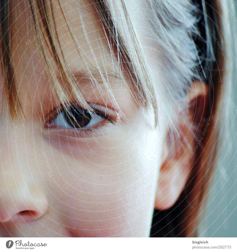 Kinderportrait feminin Mädchen Kindheit Kopf Haare & Frisuren Gesicht Auge Ohr Nase 1 Mensch 8-13 Jahre Blick Neugier Vertrauen Farbfoto Außenaufnahme Tag