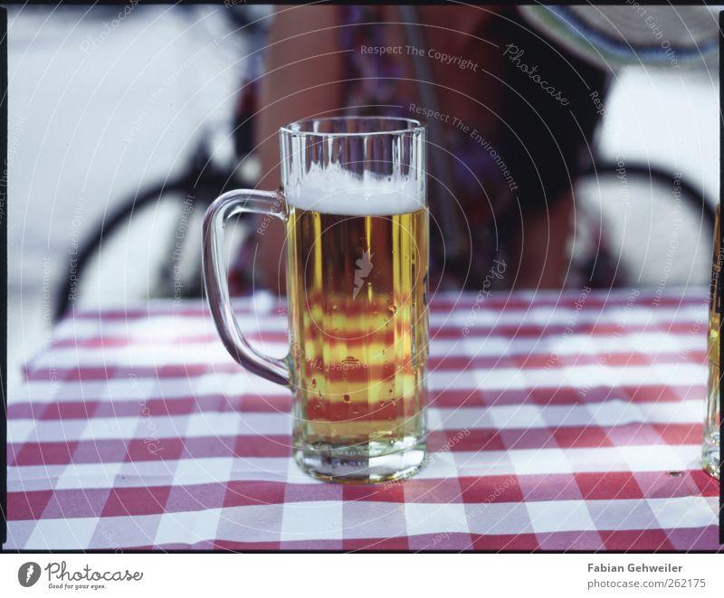 kühles blondes Ernährung Getränk Alkohol Bier Glas Rauschmittel trinken ausgehen Restaurant Farbfoto Außenaufnahme Tag Schwache Tiefenschärfe