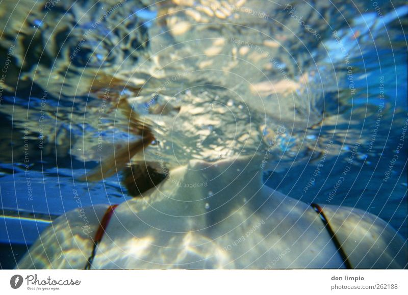 einmal luft holen Mensch Jugendliche blau Wasser Freude Erwachsene kalt feminin Schwimmen & Baden Wellen Freizeit & Hobby nass frisch Junge Frau 18-30 Jahre Perspektive