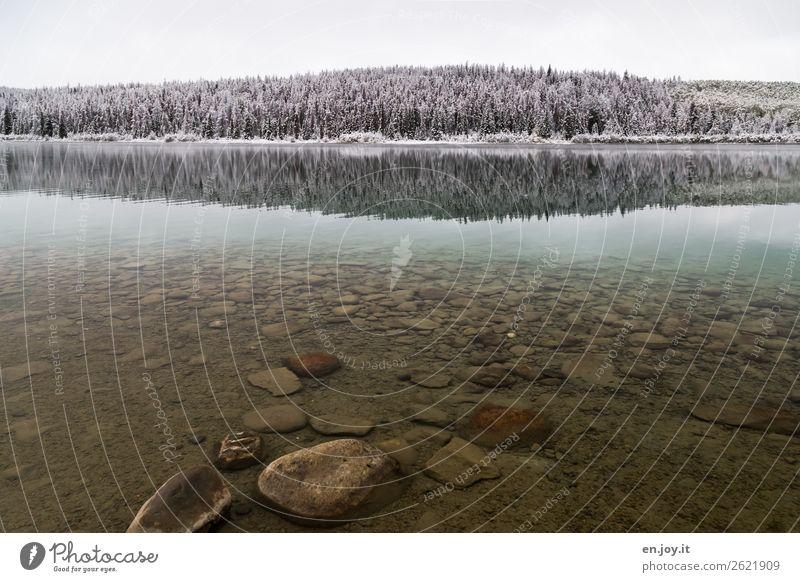 Sauber Ferien & Urlaub & Reisen Ausflug Ferne Winter Schnee Natur Landschaft Klima Klimawandel Eis Frost Wald Hügel Felsen Seeufer kalt Sauberkeit Abenteuer