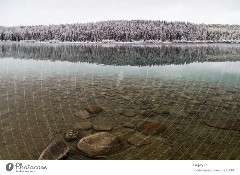 Sauber Ferien & Urlaub & Reisen Natur Landschaft Einsamkeit ruhig Wald Winter Ferne kalt Schnee See Felsen Ausflug Eis Abenteuer Klima