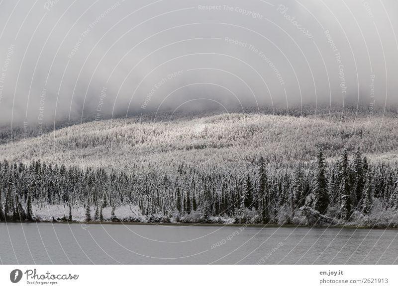 Sonnenflecken Ferien & Urlaub & Reisen Ausflug Winter Schnee Winterurlaub Natur Landschaft Wolken Wetter Nebel Eis Frost Wald Hügel Seeufer Pyramid Lake kalt