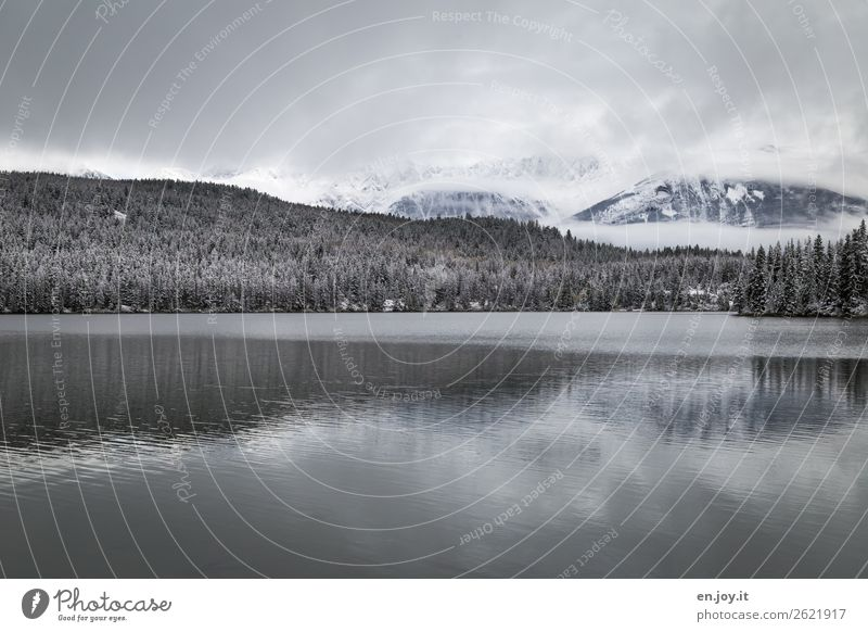 Kälte Ferien & Urlaub & Reisen Ausflug Winter Schnee Winterurlaub Natur Landschaft Himmel Wolken schlechtes Wetter Eis Frost Wald Hügel Berge u. Gebirge See