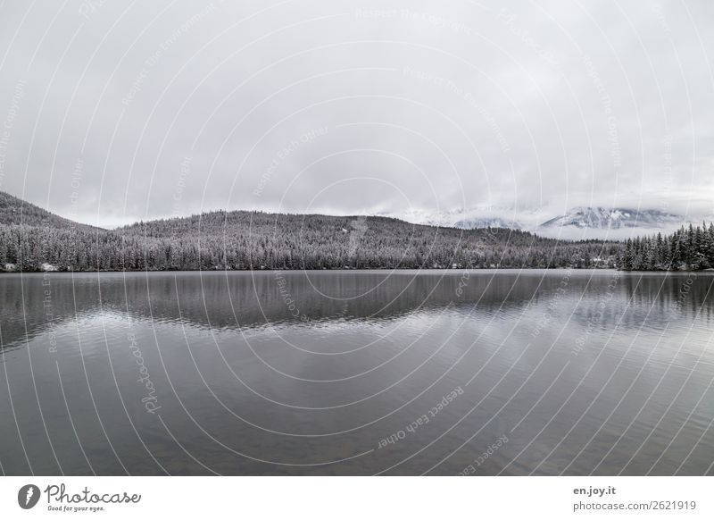 winterlich Ferien & Urlaub & Reisen Ferne Winter Schnee Winterurlaub Natur Landschaft Himmel Wolken Klima Wald Hügel Berge u. Gebirge See Pyramid Lake kalt weiß