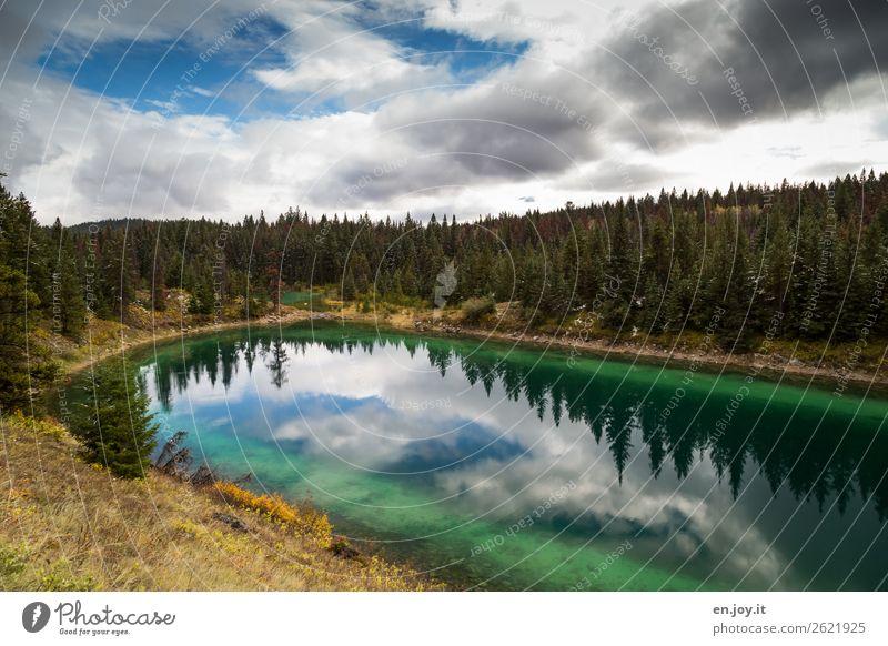 Der 4. See Ferien & Urlaub & Reisen Natur grün Landschaft Erholung Wolken Wald Ferne Herbst Tourismus Freiheit Ausflug wandern Idylle Abenteuer