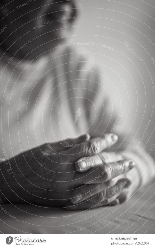 joindre les mains feminin Frau Erwachsene Weiblicher Senior Großmutter Hand Finger 1 Mensch 60 und älter Pullover Lächeln lachen alt Freundlichkeit Fröhlichkeit