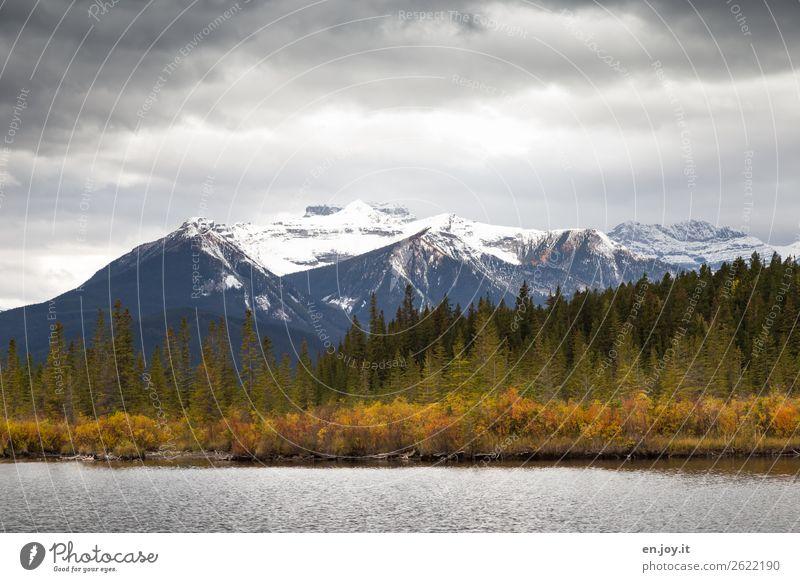 herbstliches Seeufer vor Gebirge mit Schnee bei schlechtem Wetter mit Regenwolken Herbst Wald Rocky Mountains Banff National Park Kanada Nordamerika Natur