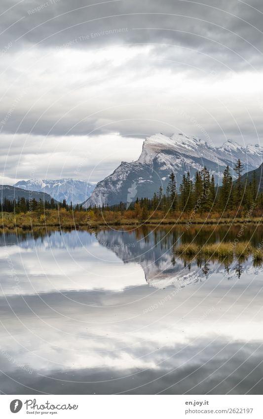 Abendruhe Ferien & Urlaub & Reisen Ausflug Berge u. Gebirge Natur Landschaft Himmel Wolken Herbst Sträucher Nadelbaum Rocky Mountains Mount Rundle