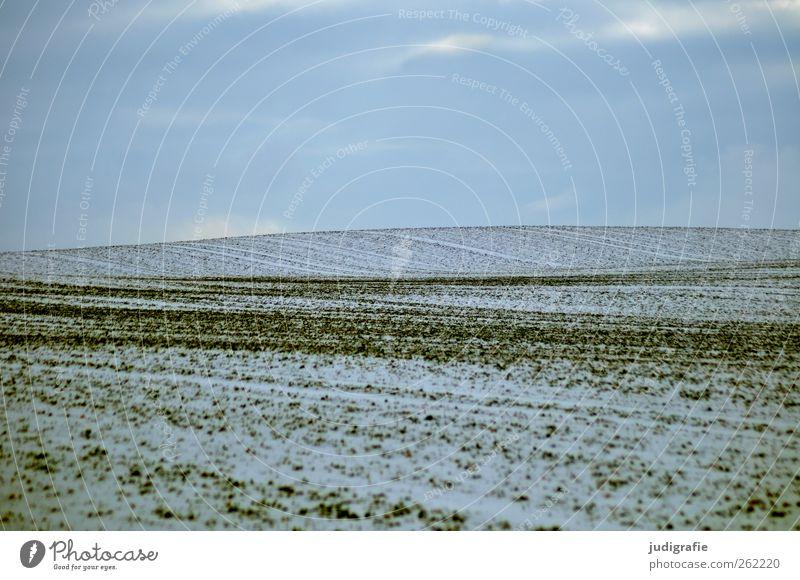 Uckermark Himmel Natur Winter Umwelt Landschaft kalt Schnee Erde Feld trist weich Landwirtschaft Forstwirtschaft Wellenform
