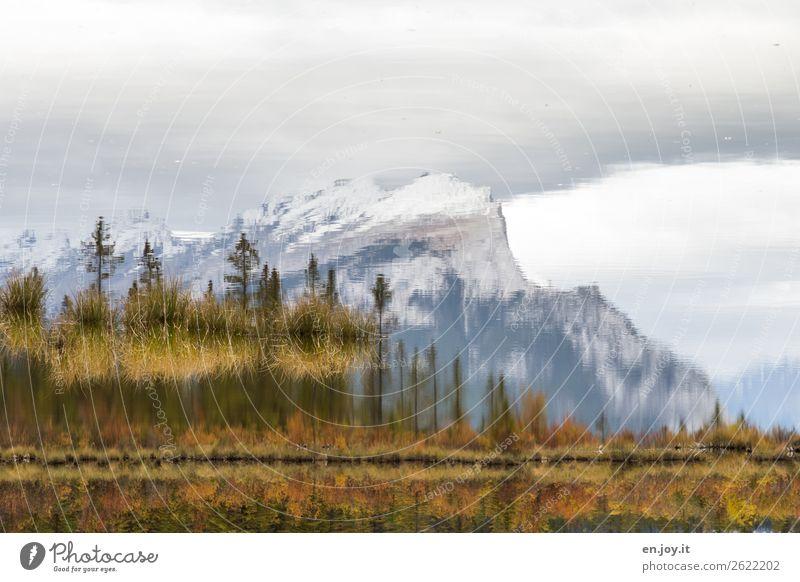 Verkehrte Welt   Herbstsee Ferien & Urlaub & Reisen Ausflug Natur Landschaft Himmel Sträucher Felsen Berge u. Gebirge Mount Rundle Gipfel Seeufer