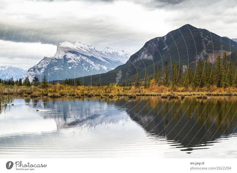 Reflexion einer Herbstlandschaft im See Vermilion Lakes Banff Nationalpark Banff National Park Alberta Kanada Nordamerika Berge Mount Rundle Reise Urlaub Natur