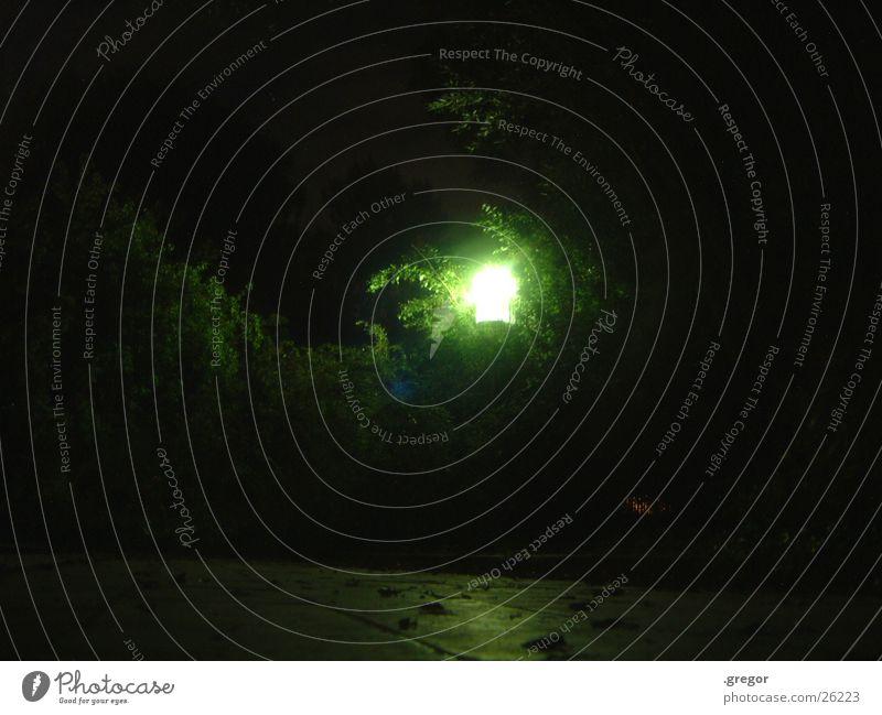 Laterne bei Nacht grün hell einzeln
