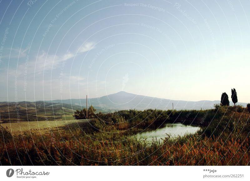 oase. Landschaft Natur Toskana Schilfrohr Teich Italien Berge u. Gebirge Hügel Idylle mediterran Farbfoto Außenaufnahme Menschenleer Textfreiraum oben