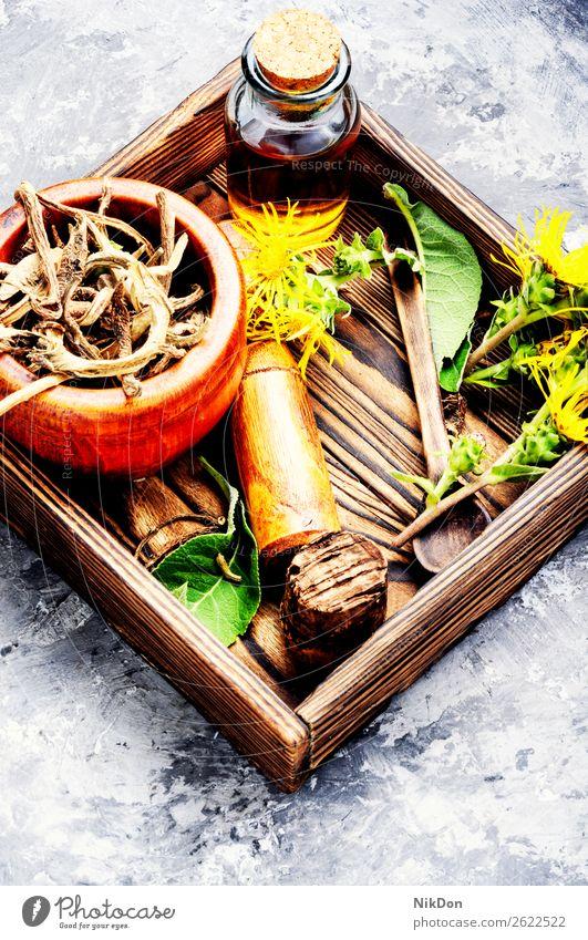 Wurzel und Tinktur von Echtem Alant inula Pflanze Medizin eAmAmpane Kräuterbuch Gesundheit natürlich Kraut medizinisch Blume Natur Rhizome Behandlung trocknen