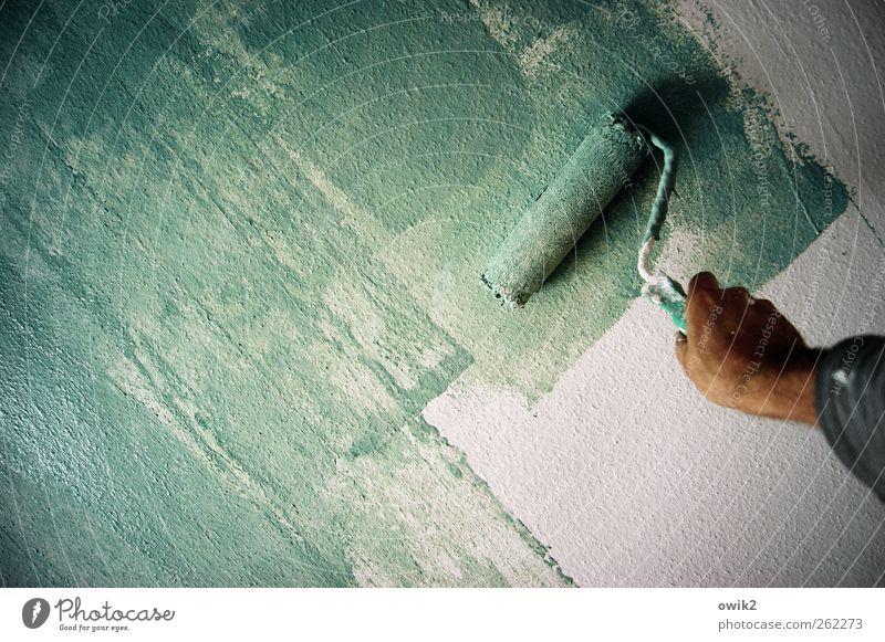 Montagsmaler Mensch Hand Farbe Wand Arbeit & Erwerbstätigkeit Raum Zufriedenheit wild hoch Erfolg frei Häusliches Leben Beruf Leidenschaft Flüssigkeit Tapete