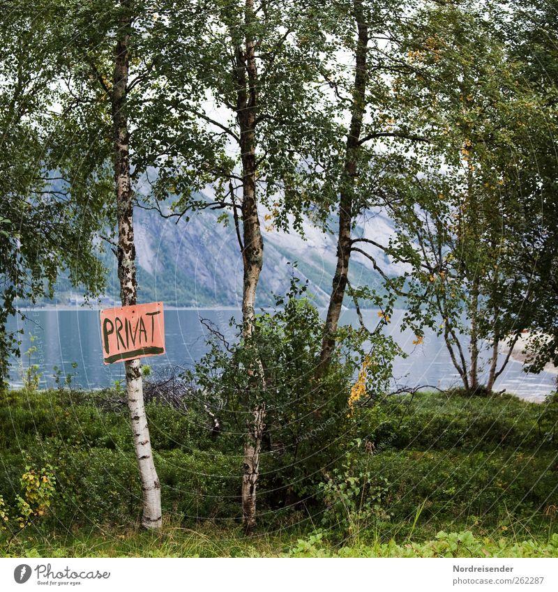 International Natur Stadt Baum Sommer Meer Landschaft Wege & Pfade Küste Schwimmen & Baden Schilder & Markierungen Ordnung Schriftzeichen Hinweisschild Macht